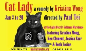 Cat Lady with cast